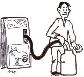 lait biocarburant