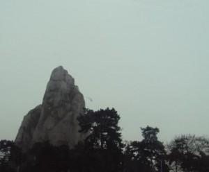 Le grand rocher du zoo de Vincennes