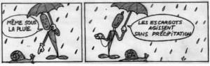 Escargots, pluie et precipitation