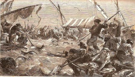 Pêche du thon à la madrague
